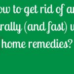 How to get rid of ants naturally using home remedies?