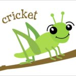 How To Get Rid Of Crickets? DIY Home Remedies for Crickets