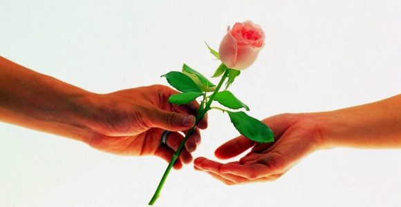 Happy Rose Day Wishes Wallpapers Greetings Messages Quotes Love Shayari