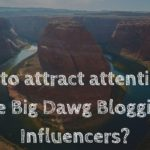How to attract attention of the Big Dawg Blogging Influencers?