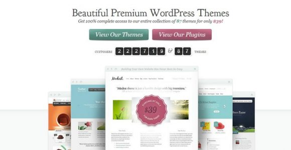 Everything You Need to Know About Elegant Themes