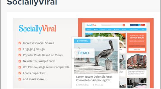 80% OFF SociallyViral Theme Coupon Code, Discount Code