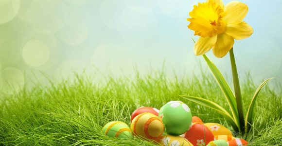 60 Most Beautiful & Cute Easter Wallpapers