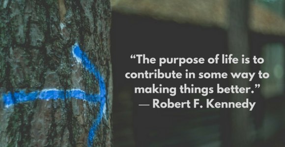 Starting with a purpose: What it can do for you?