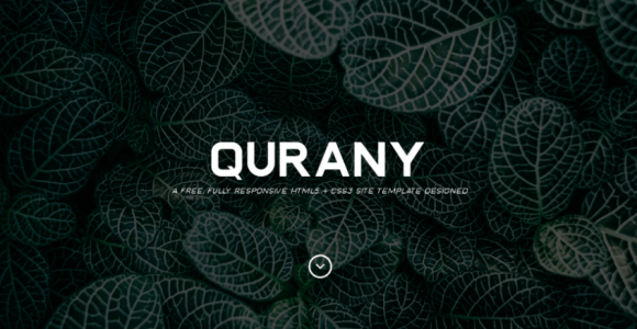 Qurany Font Family Free Download