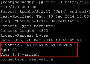 How to Activate Varnish Cache Server (Web Accelerator) on CWP