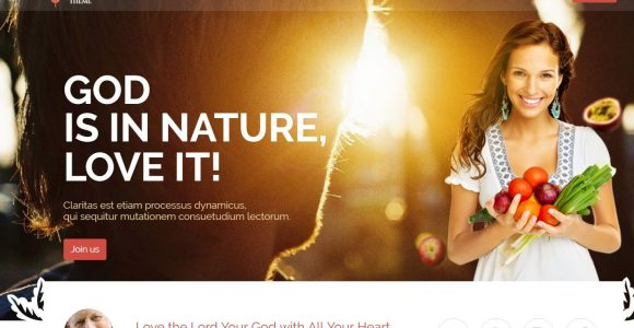 42+ Best Responsive Church WordPress Themes