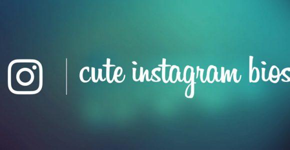 150+ Cute Instagram Bios