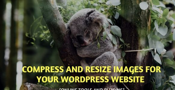 Compress and resize images for your WordPress website [Online tools and plugins]