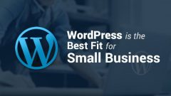 Why WordPress Web Development is the Best Fit for Your Small Business?