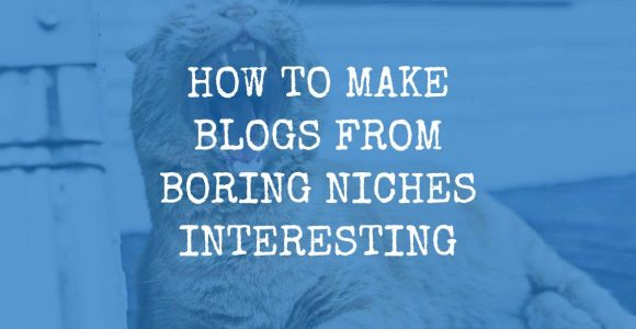 How to Make Blogs from Boring Niches Interesting – Blogging Tips