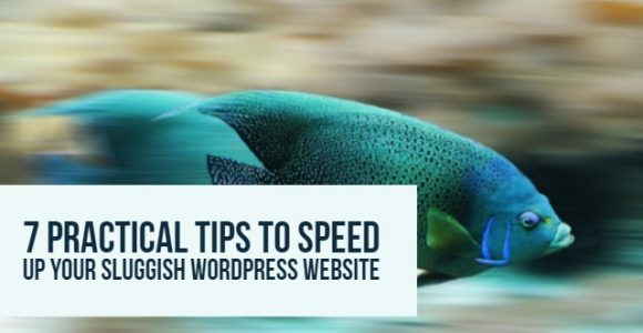 7 Practical tips to speed up your sluggish WordPress website