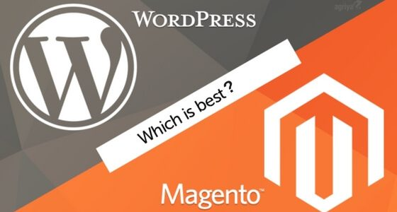 Comparative Analysis: WordPress vs Magento for eCommerce Business