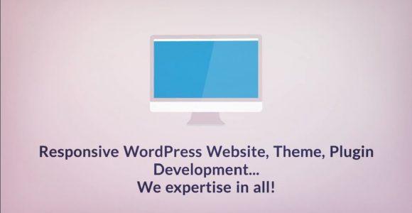 Hire WordPress Developer – Hire WordPress Development Expert – The Brihaspati Infotech