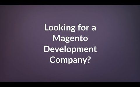 Magento Development Services – Magento Development Company – The Brihaspati Infotech