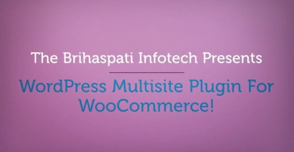 WordPress Multisite Plugin For WooCommerce