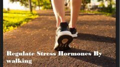 Reduce Stress in Busy lifestyle with this Excellent Lifestyle Hacks