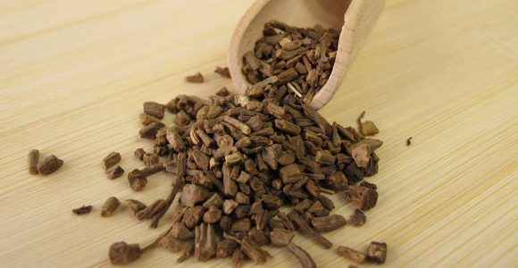 Valerian Root Extract Promotes Good Sleep Naturally