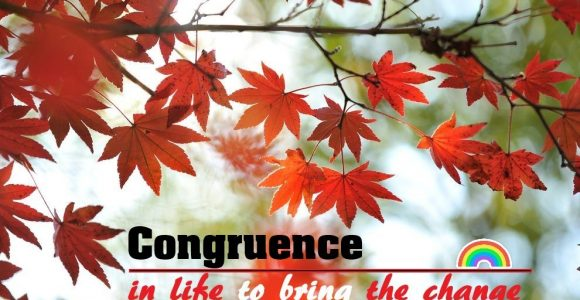 Congruence in life to bring the change | Invajy
