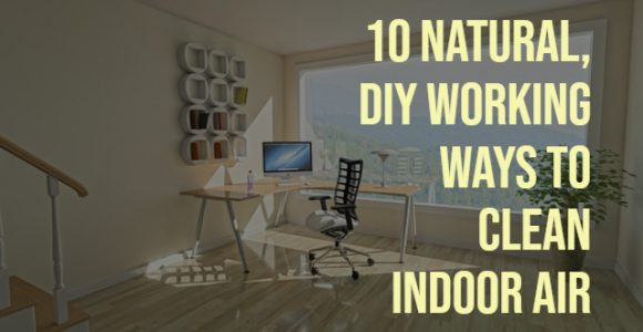 10 Natural, DIY Working Ways To Clean Indoor Air