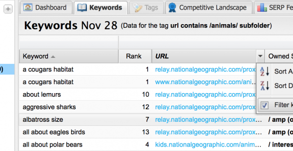Make sense of your data with these essential keyword segments