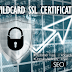 What is Wildcard SSL Certificates & Its Importance to Business? Security Certification 2019