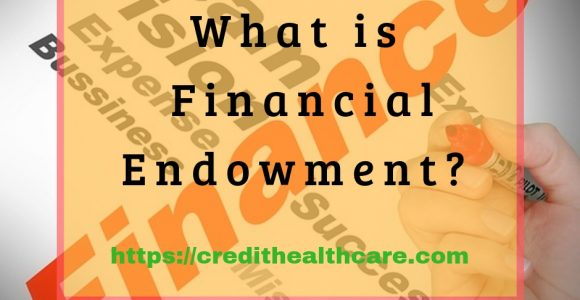 What is Financial Endowment?