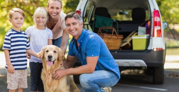 Camping with Your Dog: 5 Ways to Improve Your Experience