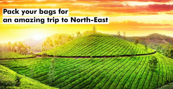 Pack your bags for an amazing trip to North-East