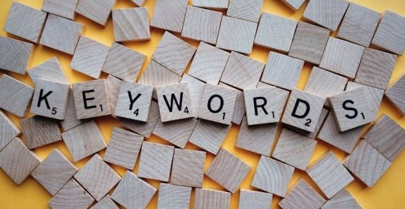 Keyword Rank Tracking: What Newbie Bloggers Need to Know