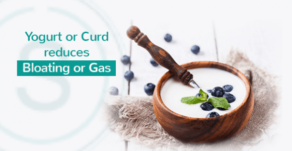How yogurt or curd reduces bloating or gas? | SMILES Bangalore