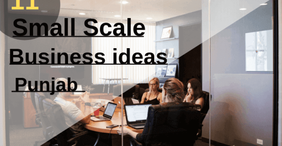 Top 11 small scale business ideas in Punjab