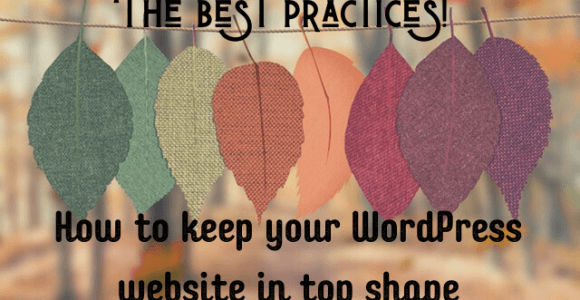 How to keep your WordPress website in top shape [The best practices!]