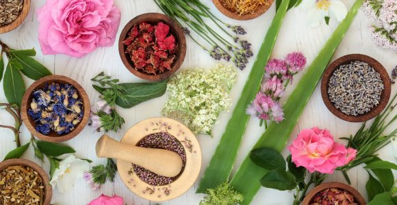 10 Best Herbs to Boost Skin Health | Get Set Happy