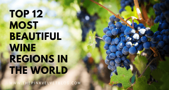 The Top 12 Most Beautiful Wine Regions in the World