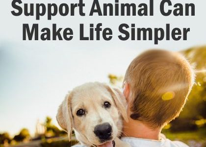 How An Emotional Support Animal Can Make Life Simpler