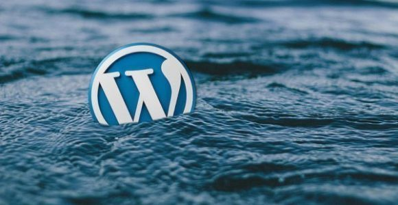 How to Export Posts of a Particular Author in WordPress