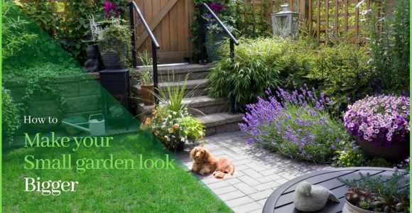 13 Simple Tricks to Make Your Small Garden Look Bigger