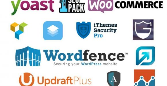 5 WordPress Plugins You Should Try Out in Your Website | Complete Connection