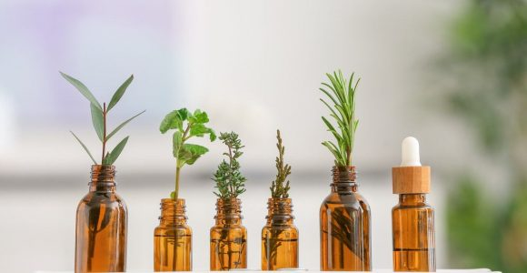 15 Best Essential Oils for Immunity – How to Use it? | Self Rooted World