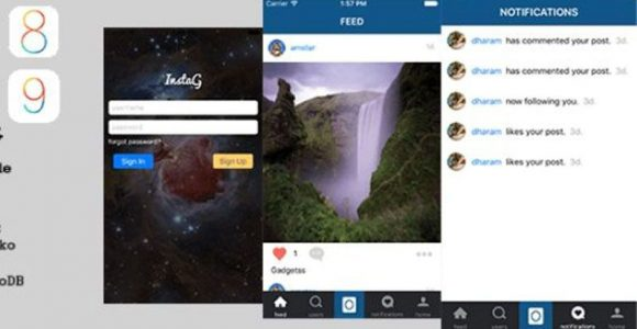 Best 4 Tips for Using Instagram Clone for Business