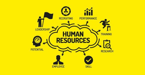 8 tips on how to succeed in human resources