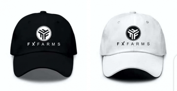 Fx Farms Review: Is Investing with FX Farms Safe