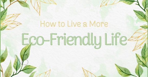 How to Start Living an Eco-Friendly Life