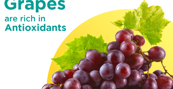 Antioxidants to fight against free radicals | Grapes source of antixidants