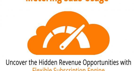 How a Flexible Subscription Engine Uncovers the Hidden Revenue