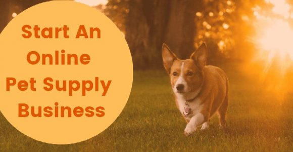 How to start an online pet supply business?