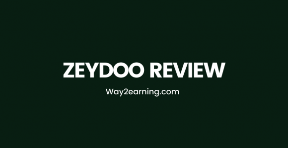 Zeydoo Review (2021): CPA Network With Profitable Offers