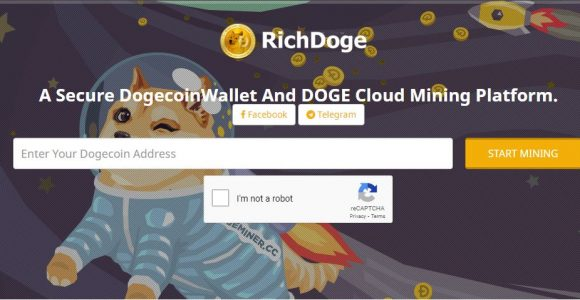 RichDoge Review: Is Dogecoin Mining with Rich Doge Legit | Bull Market