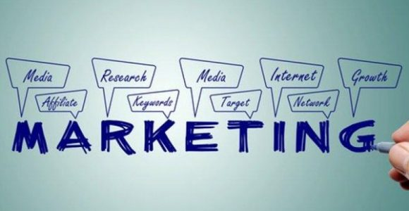How to Learn the Ins and Outs of Marketing Your Educational Website